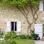 Romantischer Garten mit altem Bewuchs