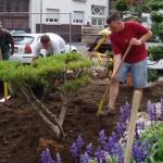 Japangarten im Auftrag der Stadt Bürstadt