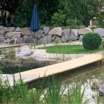 Ländliches Randdetail eines Schwimmteiches