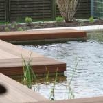 Geradliniger Pool - mit noch junger Bepflanzung