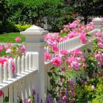 Romantischer Vorgarten mit Rosen und Lavendel