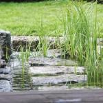 """Trittsteine im Flachwasserbereich eines Teiches - wie """"naturgemacht""""!"""