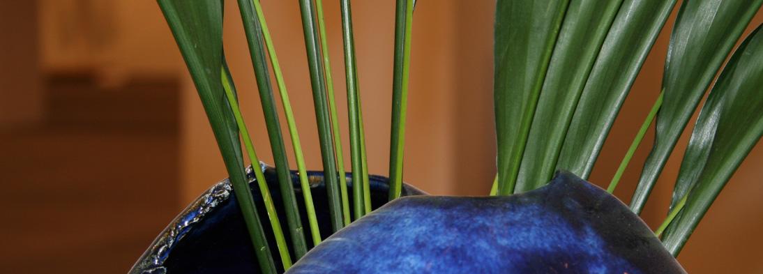 Wirkungsvolle Inszenierung einer Vase